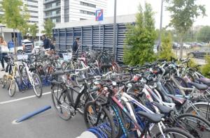 biketoworl_ColegioPEdroArrupe