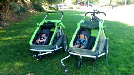 Com um acessório para transportar crianças com poucos meses. Também se transformam em carrinhos de empurrar.